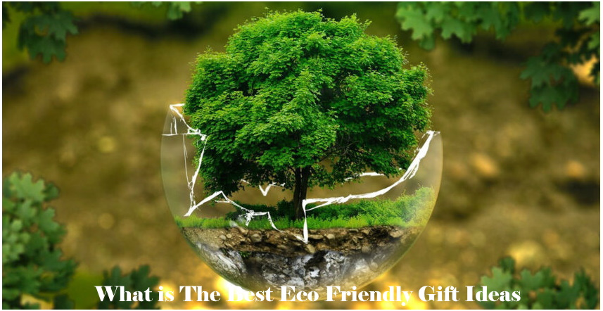 25 Best Eco Friendly Gift Ideas Reviews